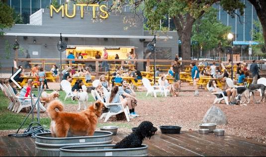 Dog Friendly Restaurants Katy
