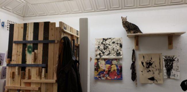 Cat_Studio.jpg