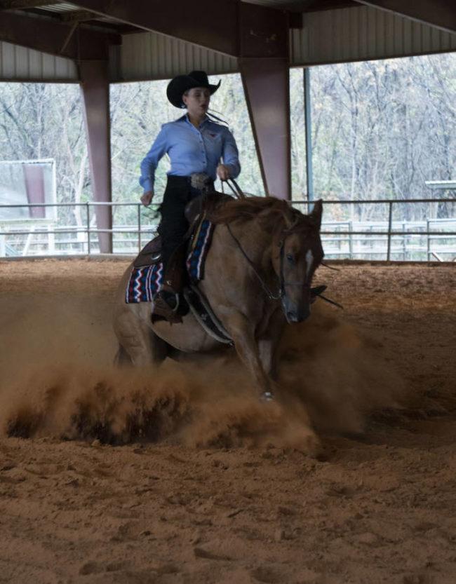 JDePasquale_equestrian1_reporting.jpg