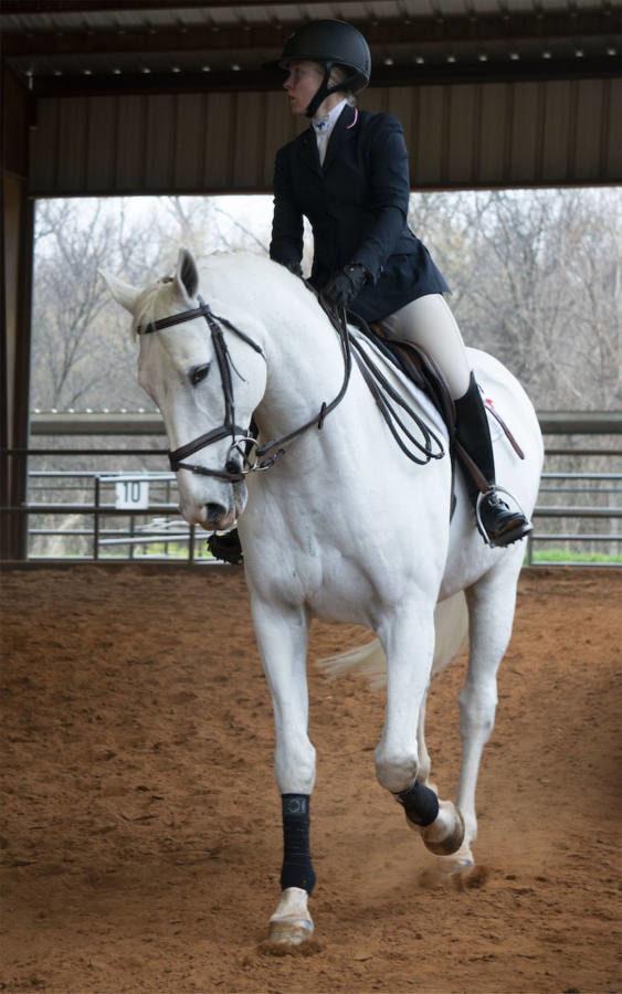 JDePasquale_equestrian2_reporting.jpg
