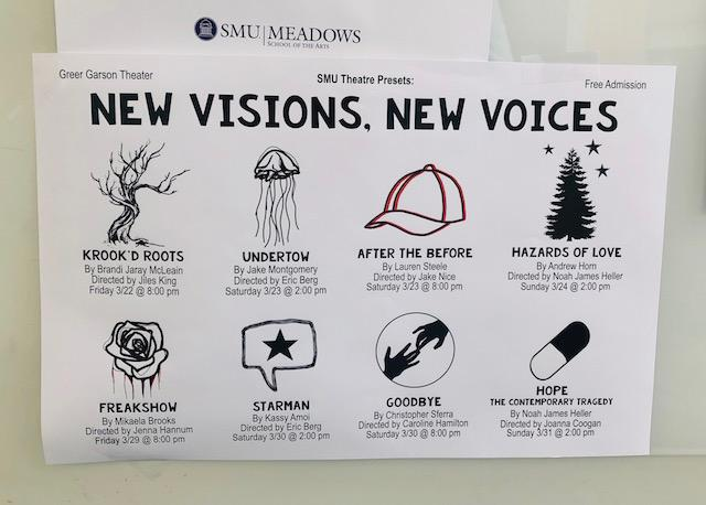 NewVisionsNewVoicesFlyer.JPG