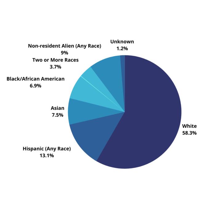 Ethnicity distribution at SMU, Fall 2020.